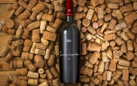 15 מוקאפים של בקבוקיי יין להורדה