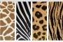גרפיקה וקטורית להורדה – 4 טקסטורות של עור של חיות