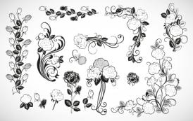 מסגרות ורדים בוקטור