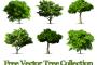 גרפיקה וקטורית להורדה: שישה עצים ריאליסטיים